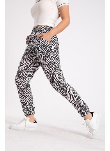 Madame Sare  Kadın Beyaz Zebra Desenli Paçası Lastikli Eşofman Altı Beyaz